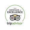 2016-tripadvisor-logo